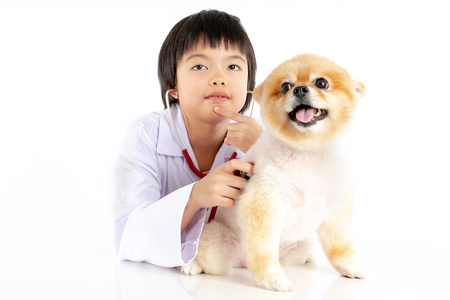 Isolated portrait of young female veterinarian checking up Pomeranian dog in veterinary clinic. Studio shot of girl and puppy on white background Archivio Fotografico - 123720494