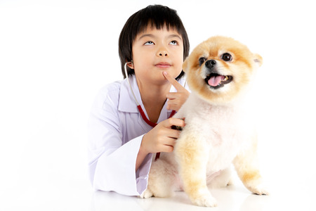 Isolated portrait of young female veterinarian checking up Pomeranian dog in veterinary clinic. Studio shot of girl and puppy on white background Archivio Fotografico - 123720495