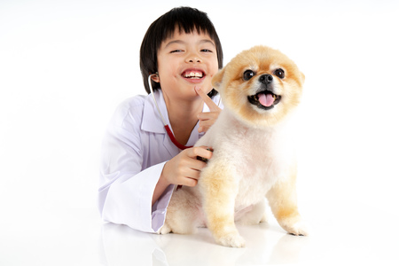 Isolated portrait of young female veterinarian checking up Pomeranian dog in veterinary clinic. Studio shot of girl and puppy on white background Archivio Fotografico - 123720496