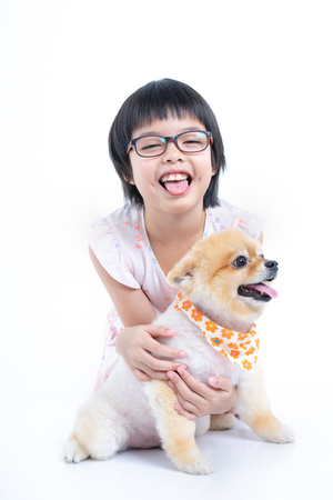 Isolated portrait Asian little girl holding Pomeranian dog with care on white background. Studio shot of girl and puppy with tongue out Archivio Fotografico - 123720500