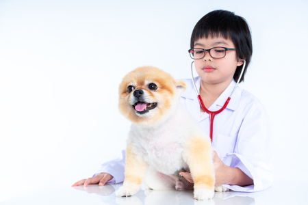 Isolated portrait of young female veterinarian with eyeglasses checking up Pomeranian dog in veterinary clinic. Studio shot of girl and puppy on white background Archivio Fotografico - 123720502