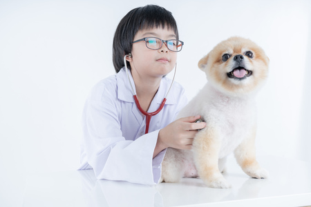 Isolated portrait of young female veterinarian with eyeglasses checking up Pomeranian dog in veterinary clinic. Studio shot of girl and puppy on white background Archivio Fotografico - 123720504