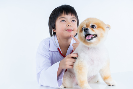 Isolated portrait of young female veterinarian checking up Pomeranian dog in veterinary clinic. Studio shot of girl and puppy on white background Archivio Fotografico - 123720548