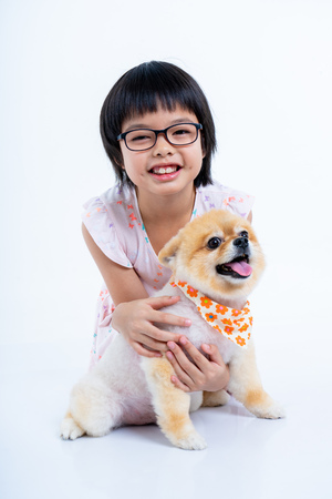 Isolated portrait Asian little girl holding Pomeranian dog with care on white background. Studio shot of girl and puppy Archivio Fotografico - 123720550
