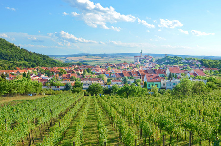 Magnificent view of green vineyards located on the hill close to beautiful historical city Mikulov in Czech Republic. The dominant of this beautiful town is Mikulov Castle. Imagens