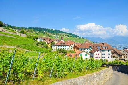 Picturesque village Rivaz in Lavaux wine region, Switzerland. Famous Geneva Lake, Lac Leman in background. Beautiful terraced vineyards on the slopes. Swiss nature, rural area. Travel, Europe.