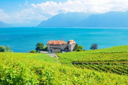 Magnificent vineyards on slopes by Geneva Lake in Lavaux wine region, Switzerland. UNESCO Heritage. Swiss summer. Switzerland landscape. Terraced vineyard. Turquoise lake. Stock Photo
