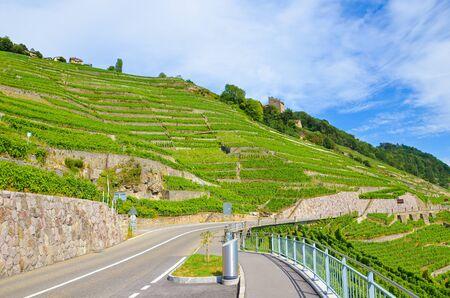 Scenic road leading along terraced vineyards belonging to famous Lavaux wine region in Switzerland. Photographed in picturesque village Riex in summer. Green vineyard on slope. Swiss wine. Empty road. Stockfoto