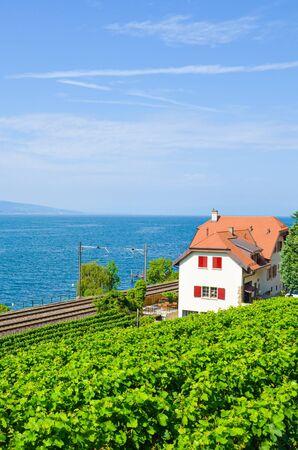 Scenic railway leading on the coast of Geneva Lake, Lac Leman in Switzerland. Green vineyard on the adjacent slope. Lavaux wine region. Swiss summer. Railroad, railway tracks. Vertical photography.