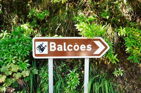Brown tourist sign giving direction to the famous Levada dos Balcoes Trail in Madeira, Portugal. Information sign, marking system. Green forest in the background.