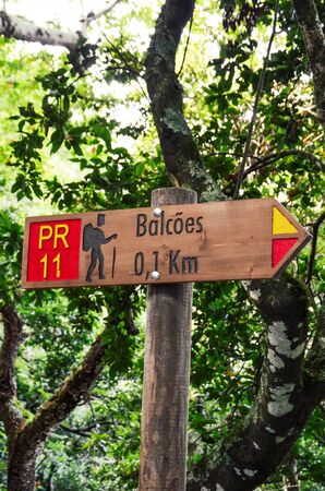 Wooden information sign giving direction and distance to the famous Levada dos Balcoes Trail in Madeira, Portugal. Tourist sign, marking system, marker. Green trees in the background.