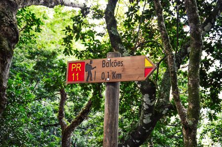 Tourist sign giving distances and directions on the famous Levada dos Balcoes Trail in Madeira, Portugal. Information sign, marking system, marker. Green trees and forest in the background.