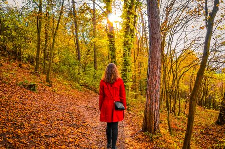 Beautiful Caucasian woman in a red coat posing in the colorful autumn forest. Sun shining through the trees. Fall fashion, colors, and style. Autumn fashion trends. Little Red Riding Hood concept.