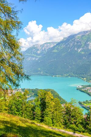 Turquoise Lake Brienz in Interlaken, Switzerland photographed from the hiking path to Harder Kulm. Amazing Swiss landscape. Green hills and Alpine lake in the valley. Summer Alpine landscapes.