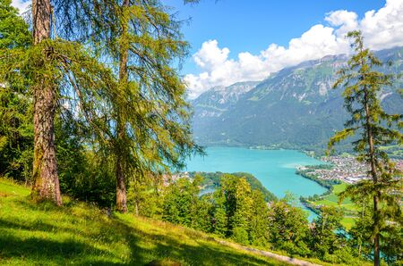 Amazing Brienz Lake in Interlaken, Switzerland photographed from the hiking path leading to Harder Kulm. Beautiful Swiss landscape. Green hills and Alpine lake in the valley. Summer Alpine landscapes.