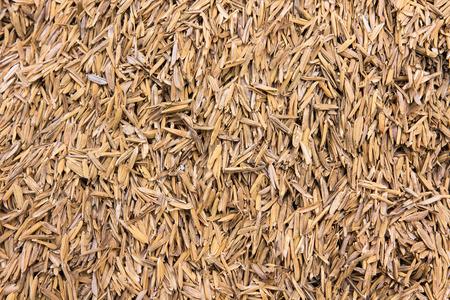 rice husk texture Reklamní fotografie