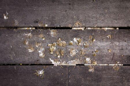 poo: Bird poo background Stock Photo