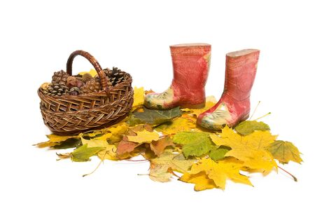 basket with pine cones and red rubber boots on the fallen leaves