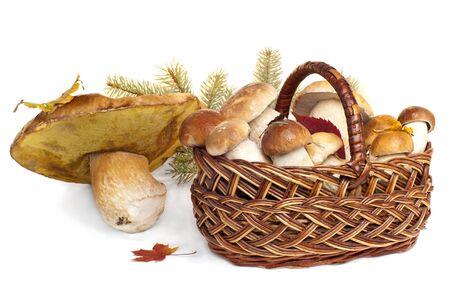 Basket with mushrooms, isolated on white photo
