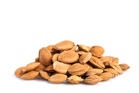apricot kernels: a heap of apricot pits