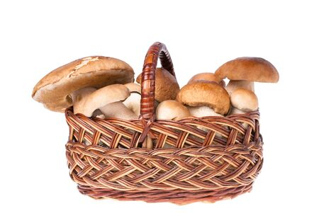 a mushroom in a basket, isolated on white photo