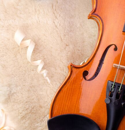 a violin and wood texture photo