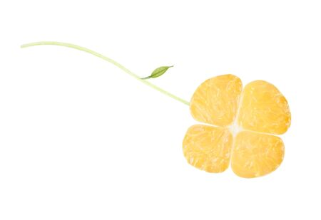 a clover  from orange,  isolated on white Stock Photo - 13706702