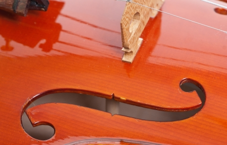 a part of violin, macro Stock Photo - 13706914