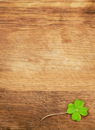 a clover on wooden desk photo