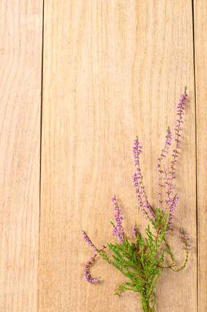 a calluna on wooden desk photo