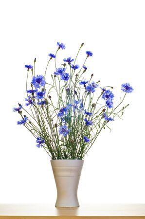 blue cornflowers in vase photo
