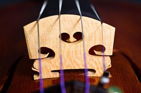 soloist: wooden violin part on black background, macro
