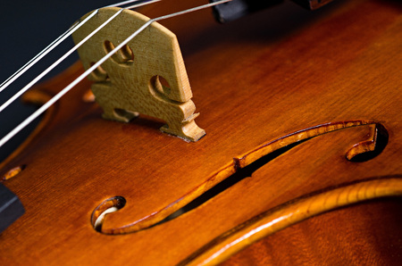 masterly: wooden violin part on black background, macro