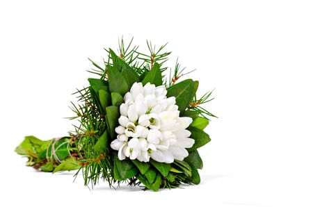 isolation: snowdrop flower bouquet in hand on white background
