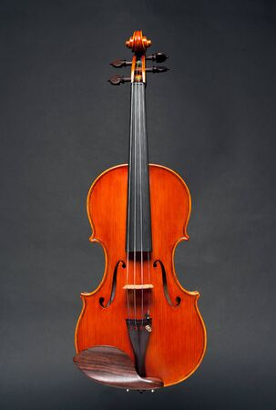 close up of a syphony violin on a black background