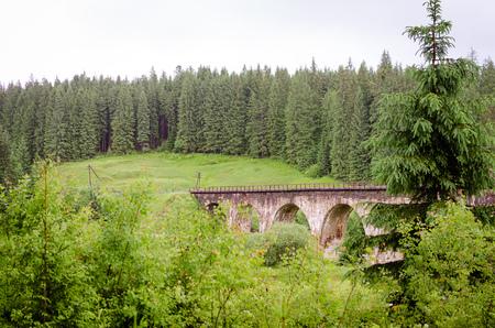 the jacobite: Old Railway. Green landscape. Ukraine Carpathians view