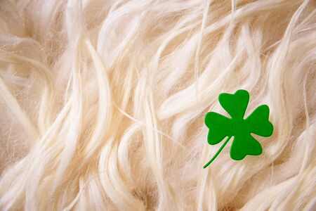 lucky charm: St. Patricks day, clover leaf on sheep wool