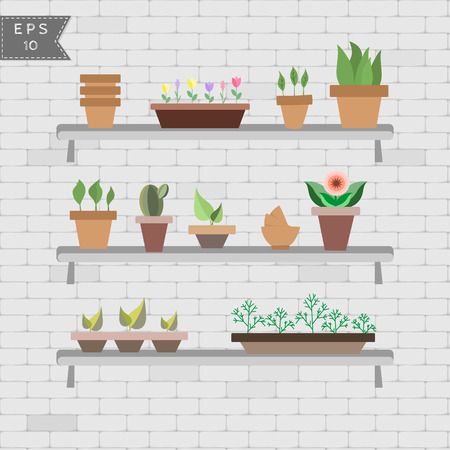 vector set of house plants in pots on the shelves on the bright background of brick wall