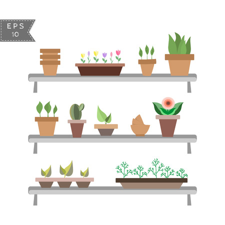 vector set of house plants in pots on the shelves