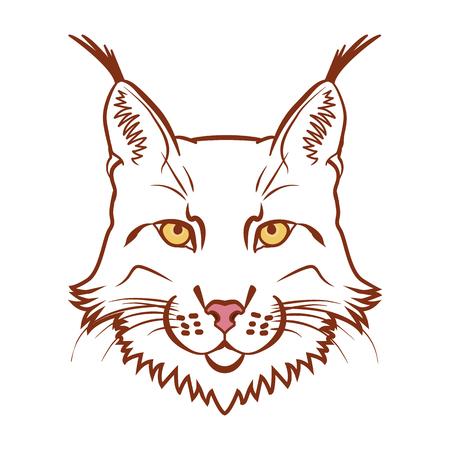 lynx: Lynx mascot logo. Head of lynx isolated vector illustration.