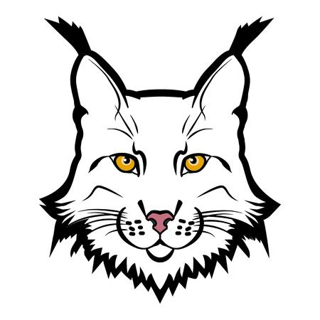 lince: mascota del lince. Jefe de lince aislado ilustración vectorial. Vectores