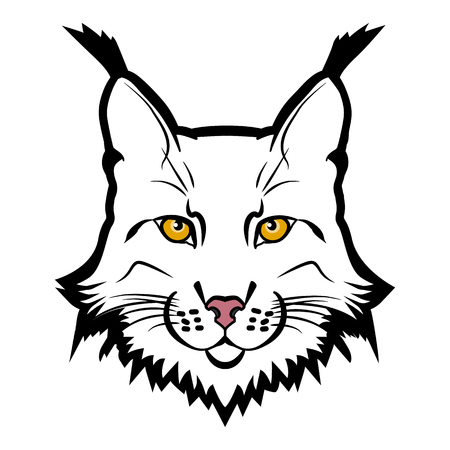 Lynx mascot  . Head of lynx isolated vector illustration.