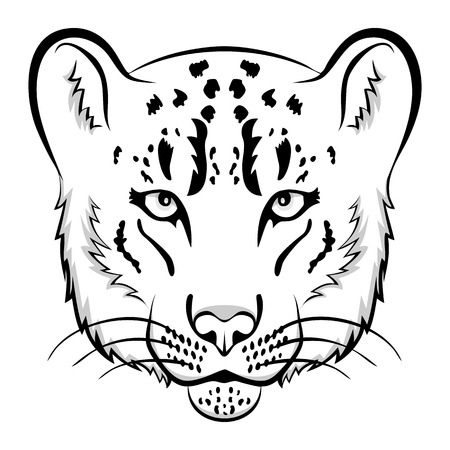 snow leopard: Snow leopard  mascot. Snow leopard head isolated vector illustration.