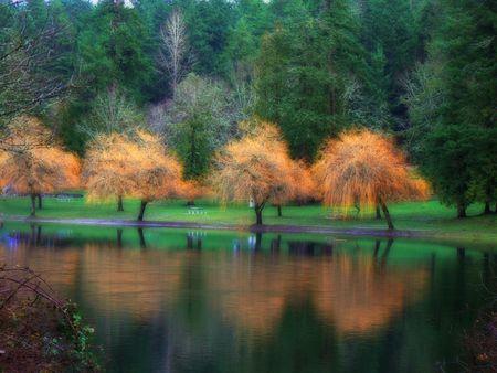Fall colors on a lake