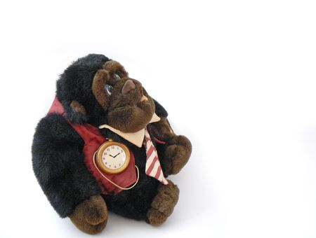 businesslike: Business-like dressed monkey with tie and pocket watch, over white Stock Photo