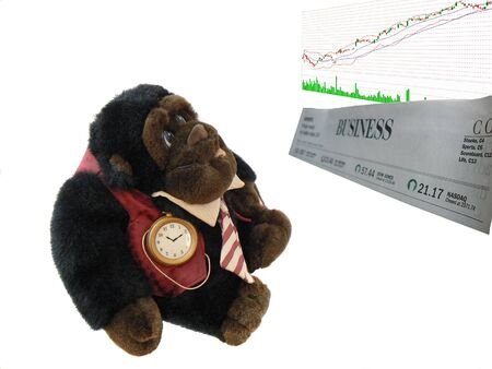 businesslike: Business-like dressed monkey watching stock market quotes, over white Stock Photo
