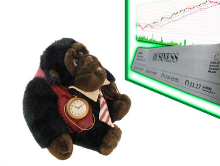 businesslike: Business-like dressed monkey watching stock market quotes posted on neon-glowing board , over white