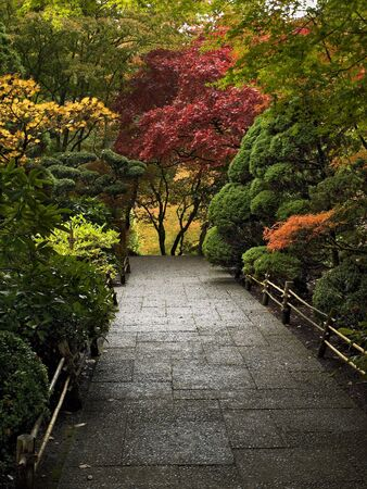 Walkway among bright autumn-colored trees and shrubs Stock Photo