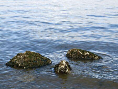 Three rocks covered in moss submerged in the gentle ocean wave Reklamní fotografie