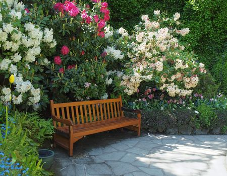 Garden bench surrounded by lush spring vegetation